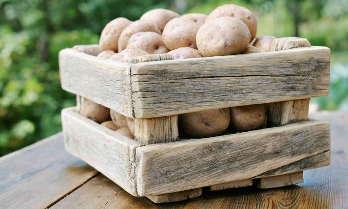 как правильно хранить картошку
