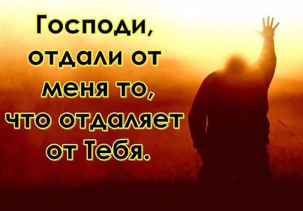 12509714_876265762490801_481431524698040585_n (592x412, 169Kb)