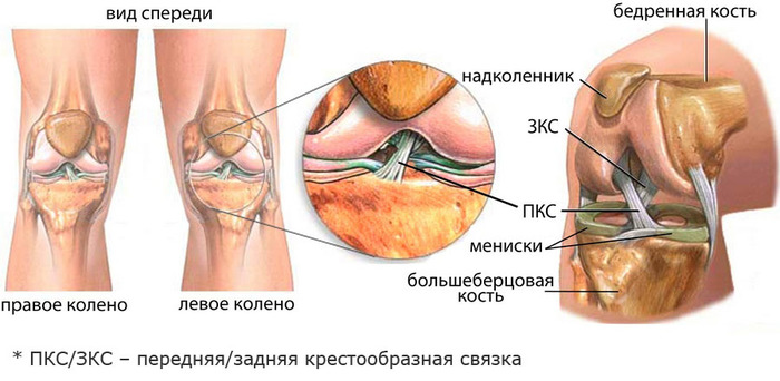 мощное средство для коленного сустава