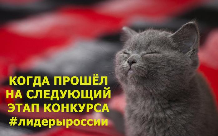 #лидерыроссии (700x437, 252Kb)