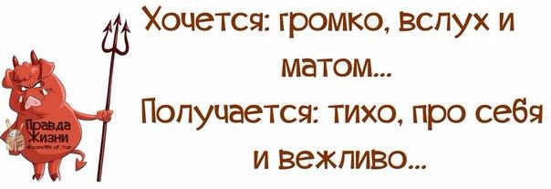 1385950232_frazochk-i-2 (604x207, 100Kb)