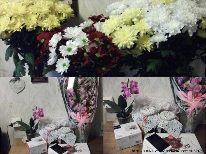 цветы (700x525, 275Kb)