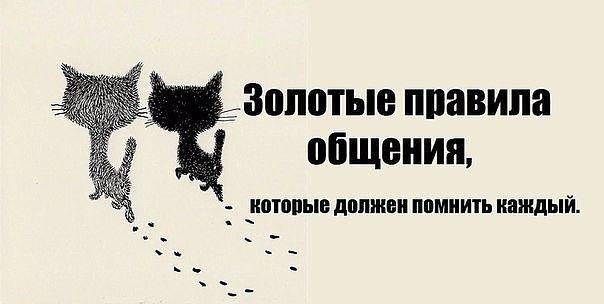 4015725_4_1_ (604x304, 25Kb)