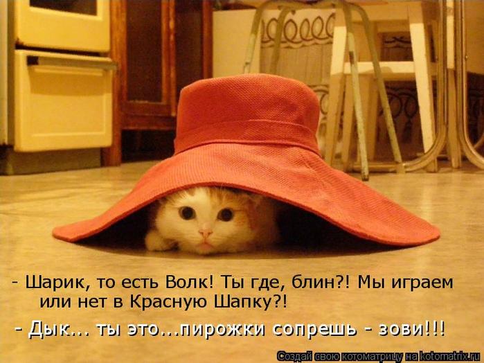 kotomatritsa_T (700x524, 485Kb)