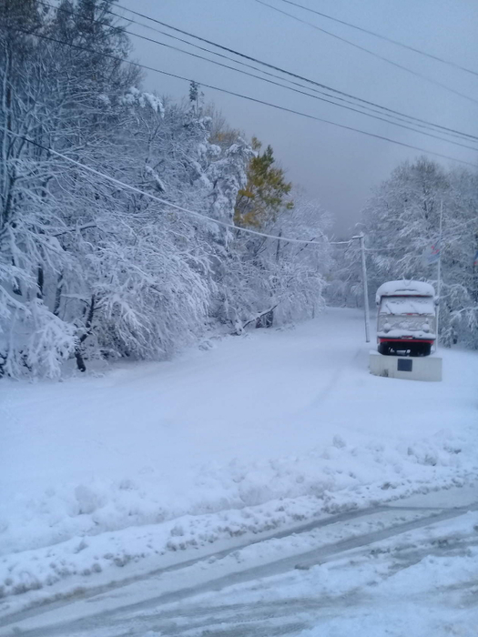 снег (525x700, 249Kb)