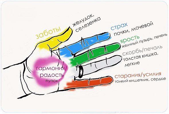 пальцы (590x400, 148Kb)