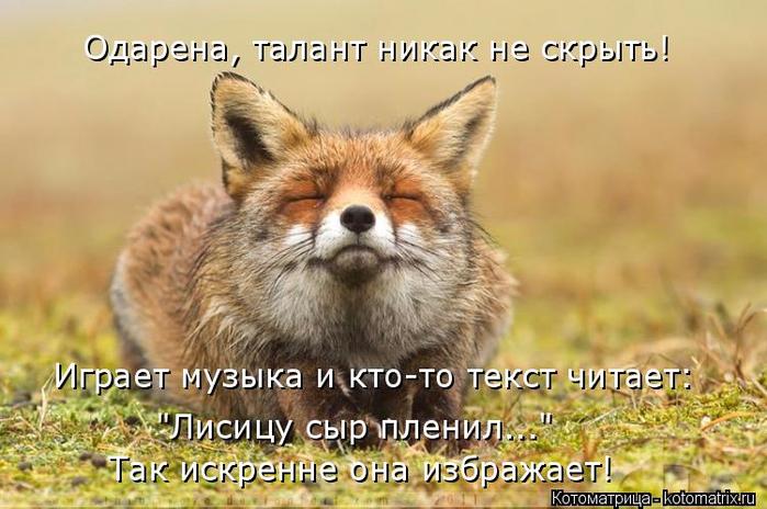 kotomatritsa_G (700x464, 338Kb)