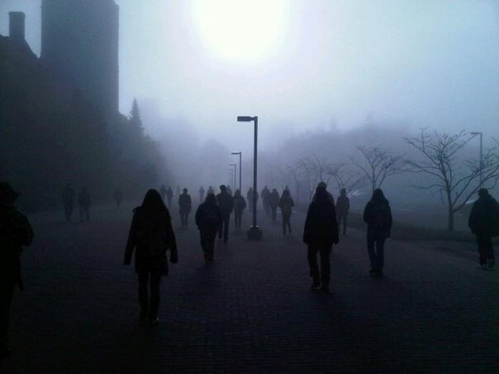 Фотографии реальных мест, похожие на кадры из фильма ужасов