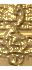 0_96b8e_95e9879c_S (32x70, 6Kb)