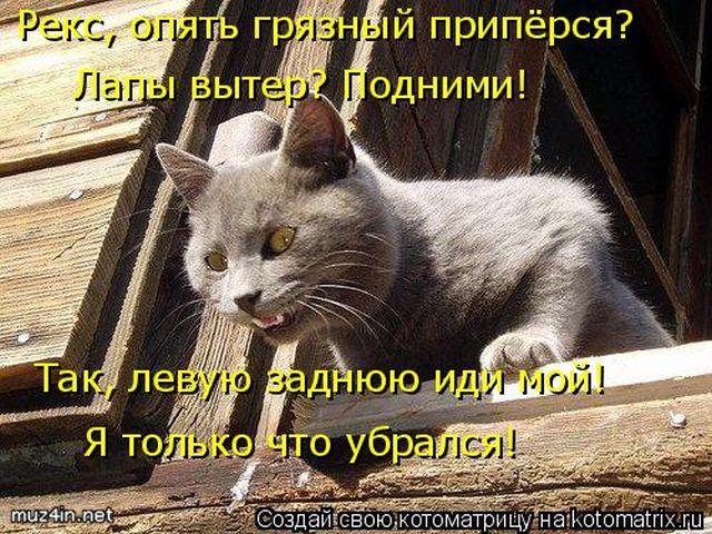 1512715759_24 (640x480, 355Kb)