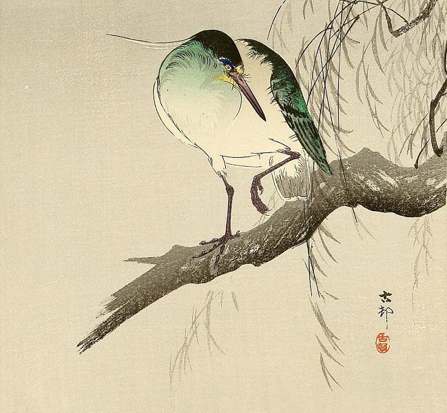 Heron on Branch.. (649x599, 368Kb)