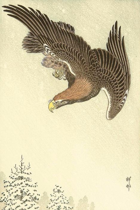 Eagle in Flight against a Snowy Sky. (469x700, 374Kb)