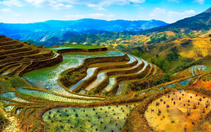 Banaue-Rice-Terraces-Indonesia-Wallpapers-HD-1920x1200-1440x900 (700x437, 450Kb)
