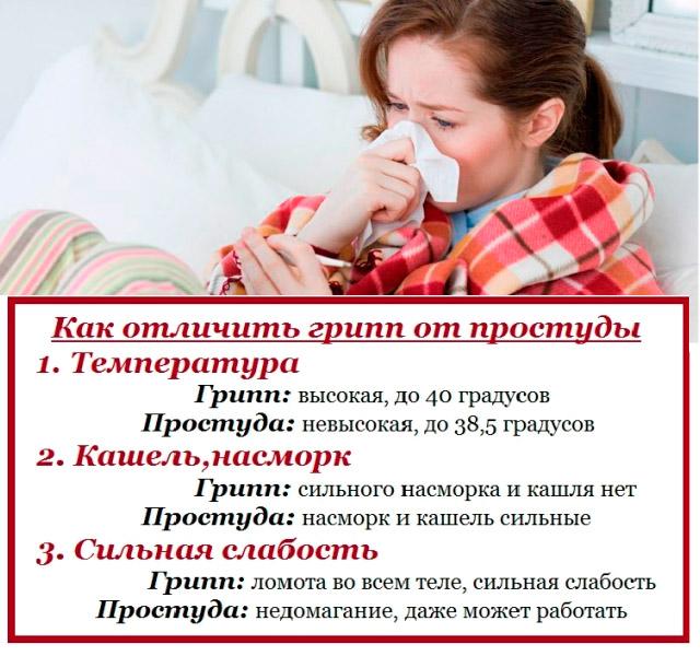 5710130_gripp_i_prostyda__kak_razlichat_ih (640x600, 114Kb)