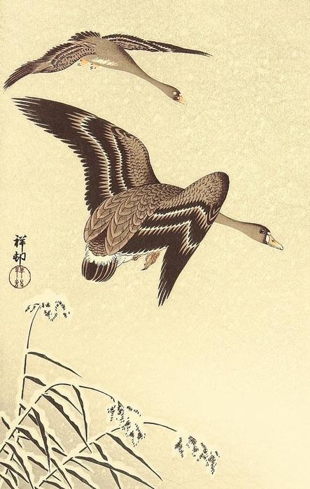 Geese in Snow Falling Sky (443x700, 132Kb)