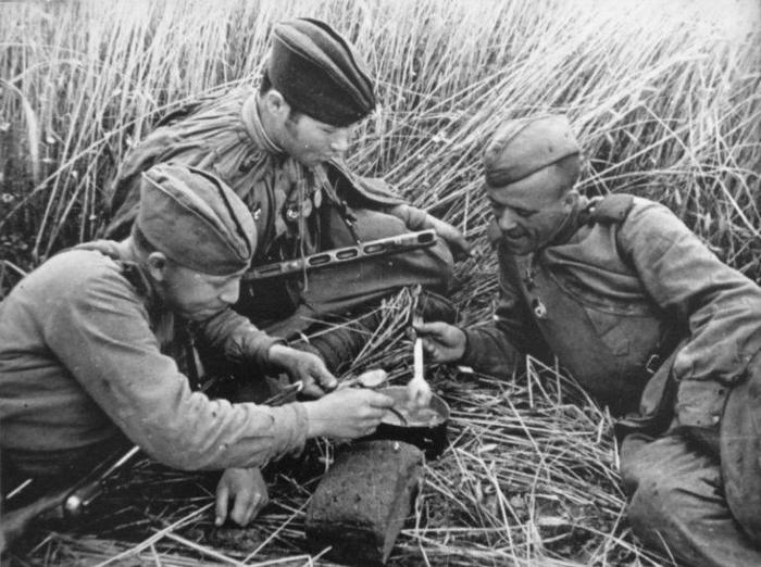Зачем солдатам советской армии давали перловку и чем кормили в армии до 1917 года
