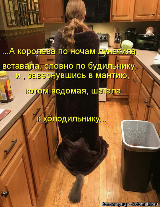 kotomatritsa_q (542x700, 443Kb)