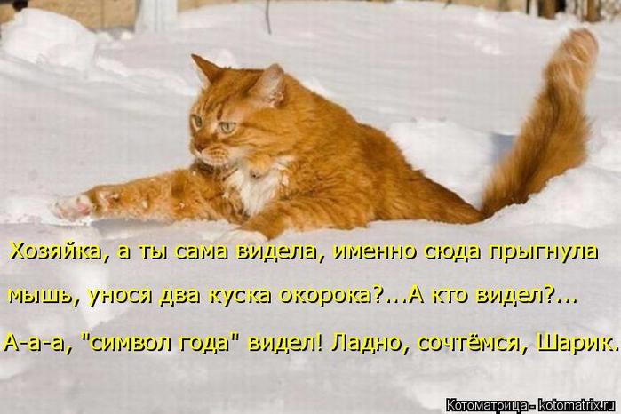 kotomatritsa_N (700x466, 313Kb)
