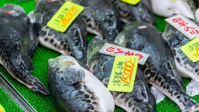 141138506 031618 1210 41 Самые опасные для жизни блюда, которые популярны в разных странах