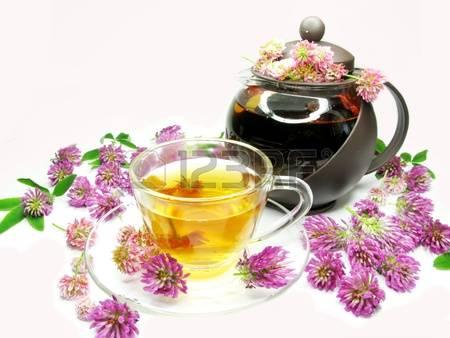 11761940-травяной-цветочный-чай-с-клевера-розовыми-цветами (450x338, 109Kb)