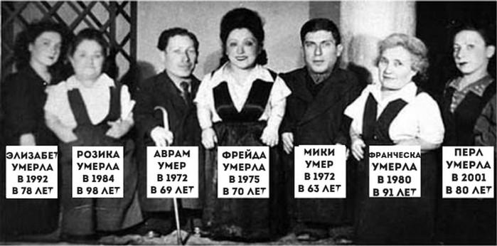 «Семь гномов» Освенцима: трагическая история евреев-карликов Овиц, переживших эксперименты нацистов