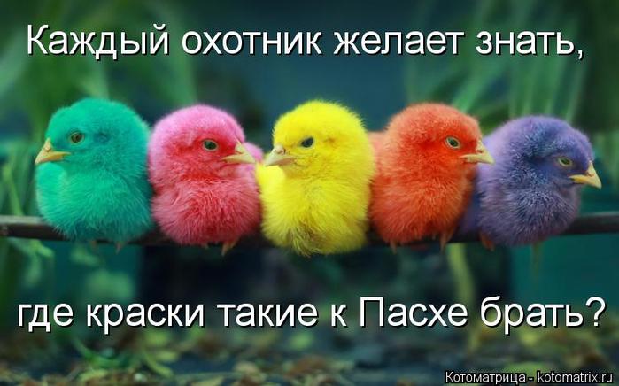 kotomatritsa__W (700x436, 302Kb)