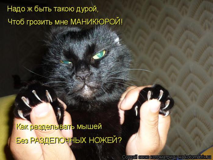 kotomatritsa_7 (700x524, 362Kb)