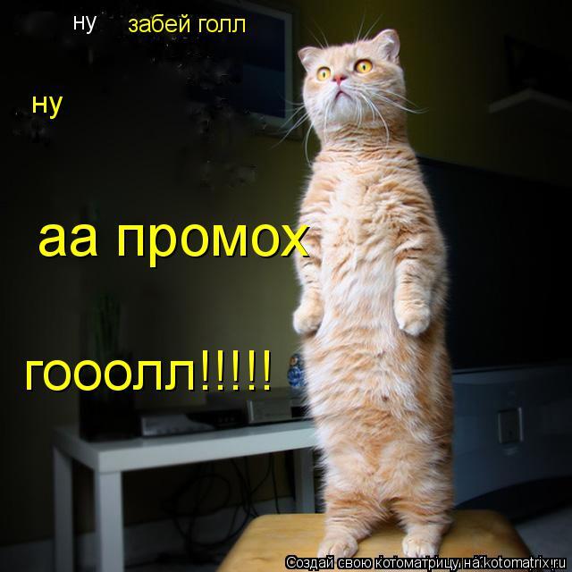 kotomatritsa_y (640x640, 208Kb)