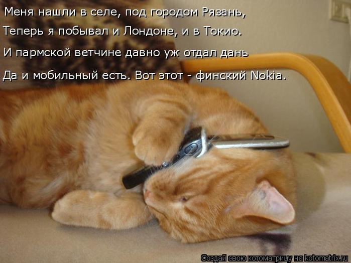 kotomatritsa_0 (700x524, 337Kb)