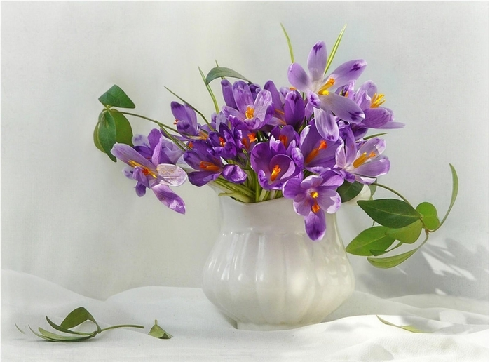flowers_flowing_vase_bouquet_greens_branch_39481_1600x1180 (700x516, 207Kb)