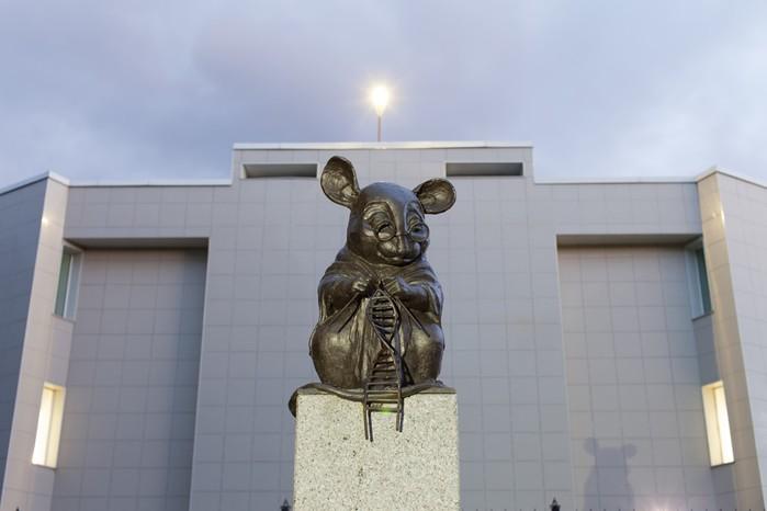 Три удивительных памятника, посвященных разным животным