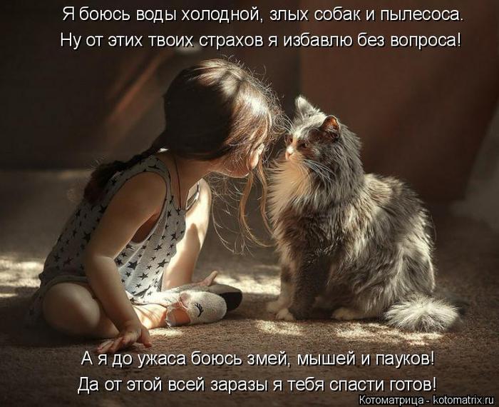 kotomatritsa_A (1) (700x570, 350Kb)