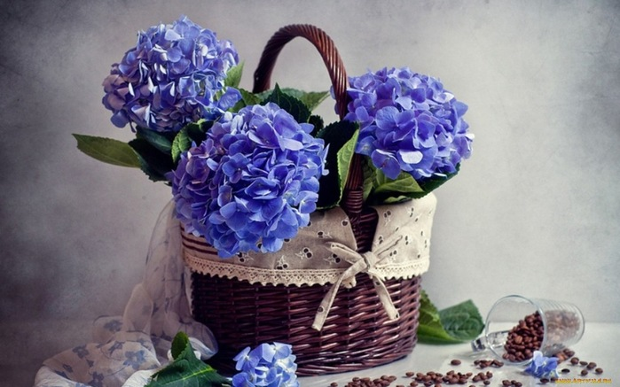flowers_in_basket_08 (700x437, 98Kb)