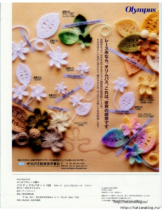 Asahi_Original_-_Lacework_Pineapple_Pattern_100.page83 copy (539x700, 370Kb)