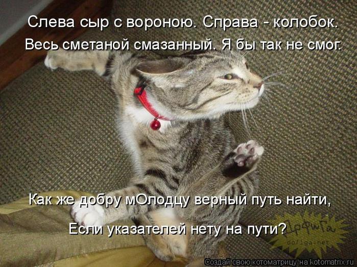 kotomatritsa_D (1) (700x524, 444Kb)