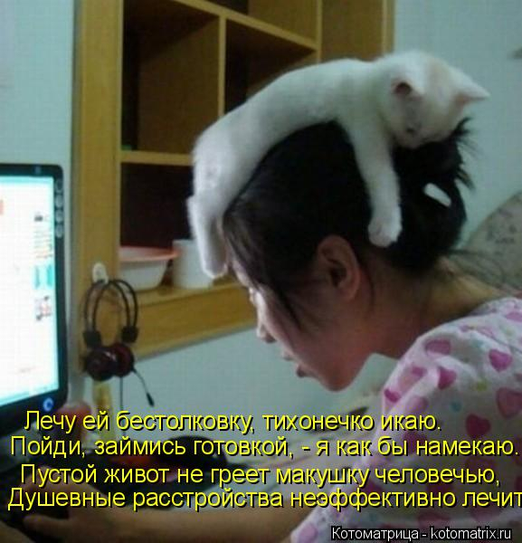 kotomatritsa_df (577x600, 250Kb)