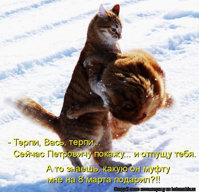 kotomatritsa_U- (700x674, 456Kb)