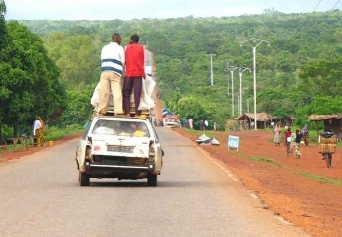 «Лежачий полицейский» по африкански: огромная змея перегородила дорогу (видео)
