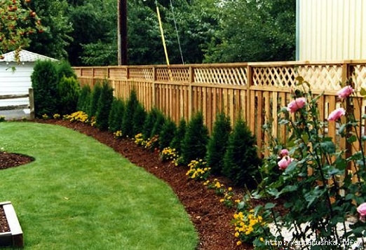 attractive-fenced-backyard-landscaping-ideas-1000-images-about-lattice-fence-on-pinterest-lattice-fence (522x357, 184Kb)
