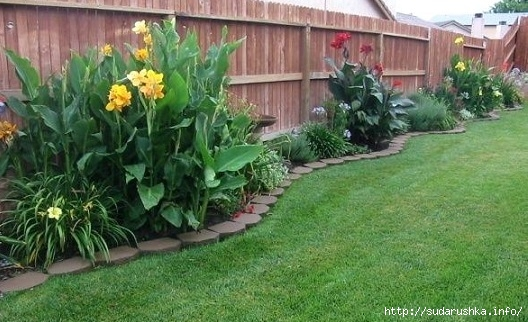 best-25-landscaping-along-fence-ideas-on-pinterest-privacy-fence-landscaping-fence-landscaping-and-backyard-landscaping-privacy-tiny-backyard-garden-ideas-backyard-potted-plant-ideas (528x322, 161Kb)