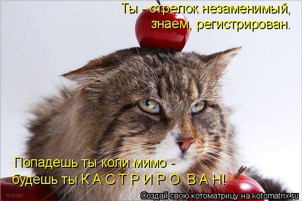kotomatritsa_d (600x400, 204Kb)