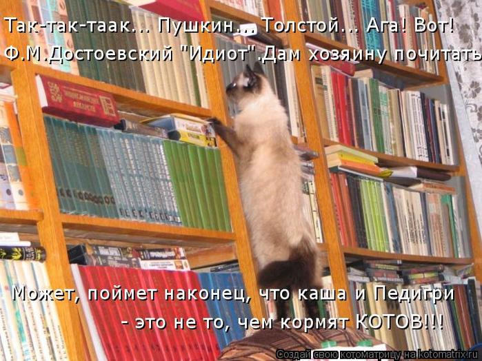 kotomatritsa__ (700x524, 477Kb)