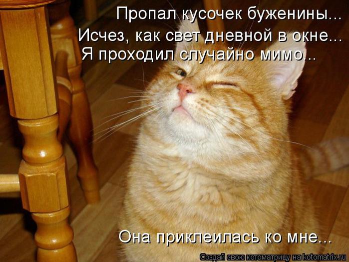 kotomatritsa_Y8 (700x524, 407Kb)