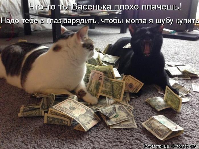 kotomatritsa_g (700x524, 350Kb)