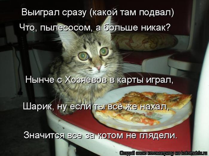 kotomatritsa_l (700x524, 314Kb)