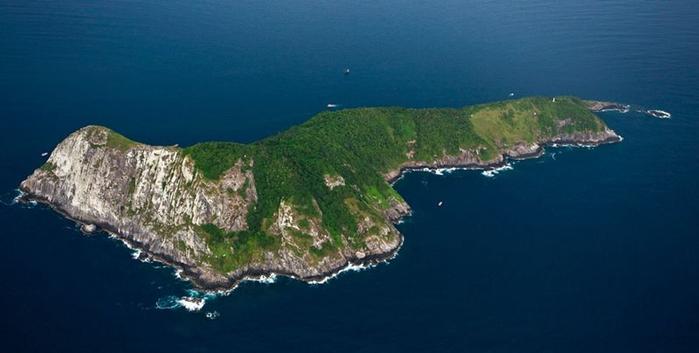 Остров змей в Бразилии