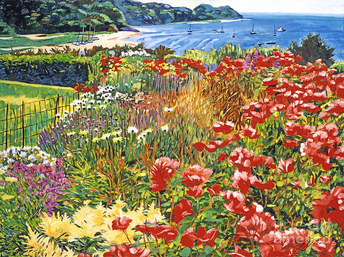 cape-cod-ocean-garden-david-lloyd-glover (700x523, 773Kb)