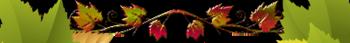 Едравствуй осень 3 (350x43, 29Kb)