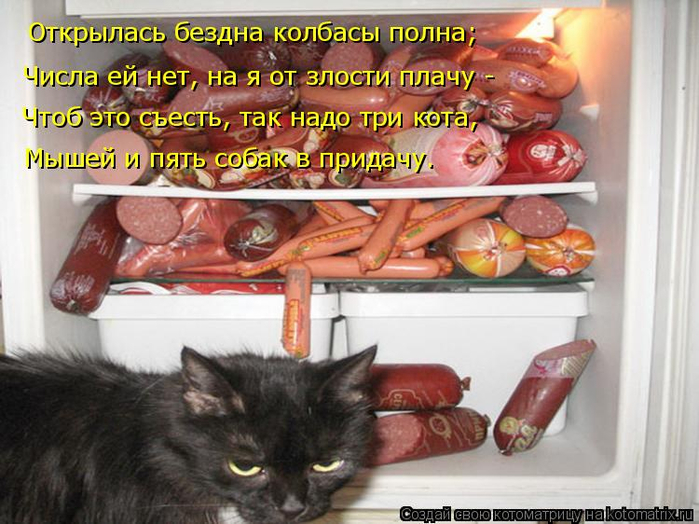 kotomatritsa_h (700x524, 382Kb)