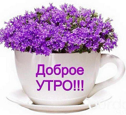 http://img0.liveinternet.ru/images/attach/d/1/129/859/129859046_image__3_.jpg